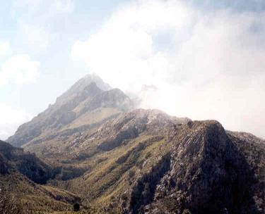 Arriba de la montaña en busca de la salvación y de la verdad.